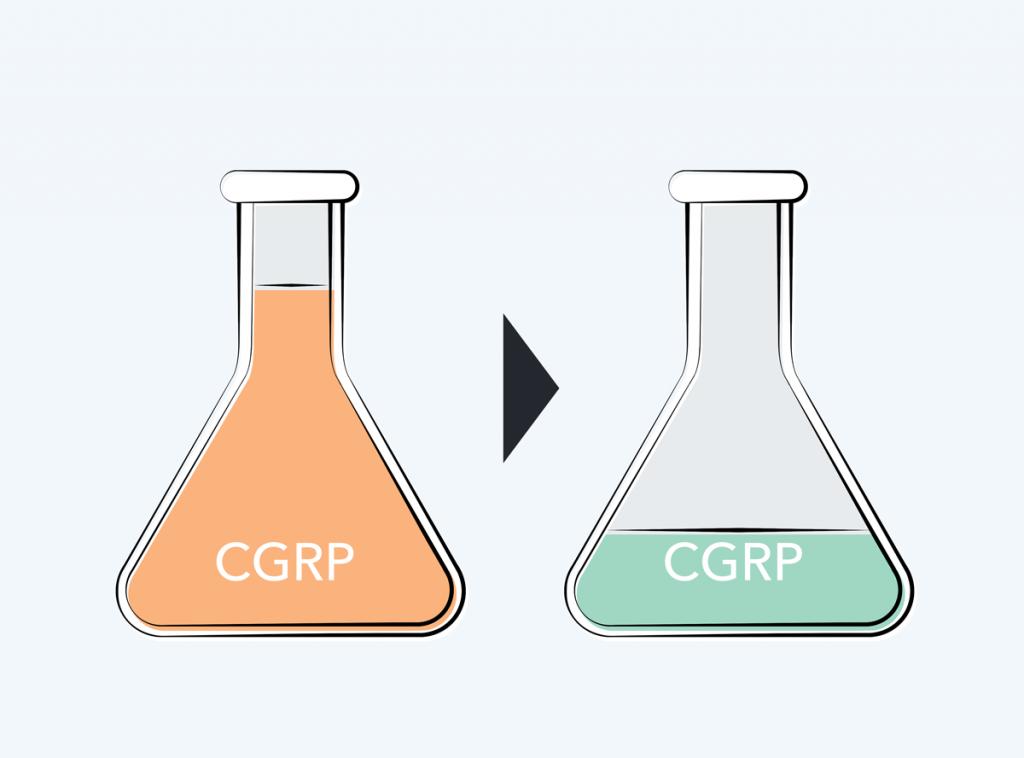 Rehaler - Reduces CGRP in the brain